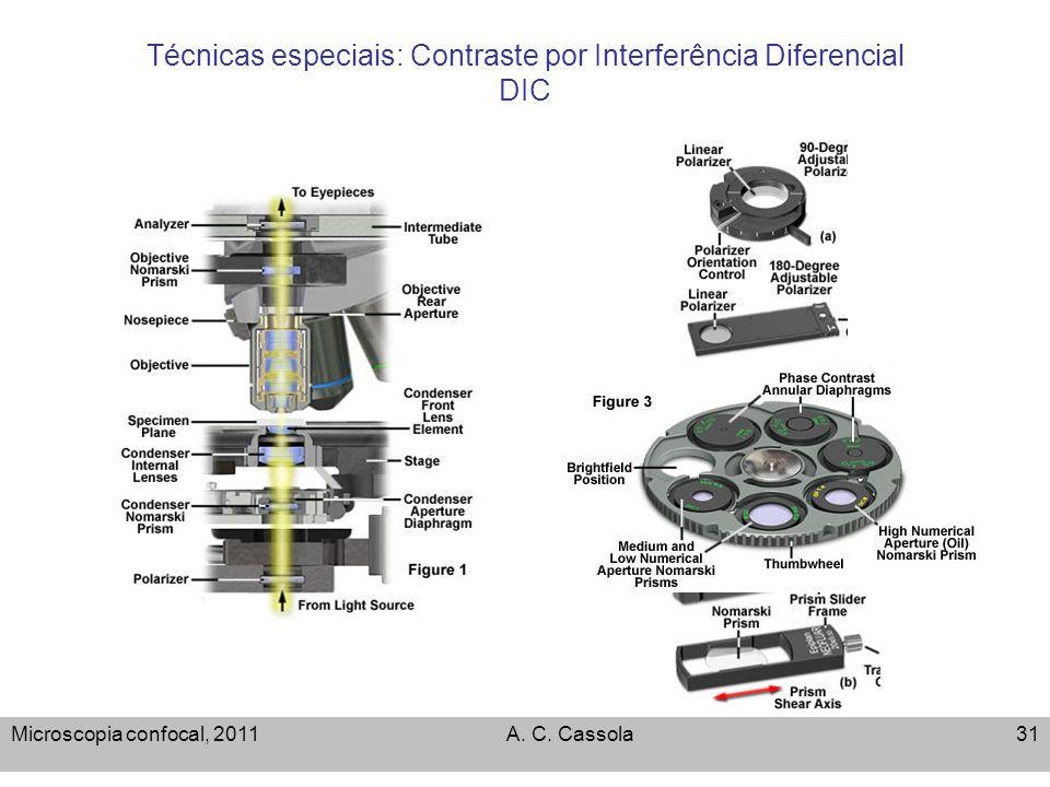 Microscopia confocal, 2011A. C. Cassola31 Técnicas especiais: Contraste por Interferência Diferencial DIC