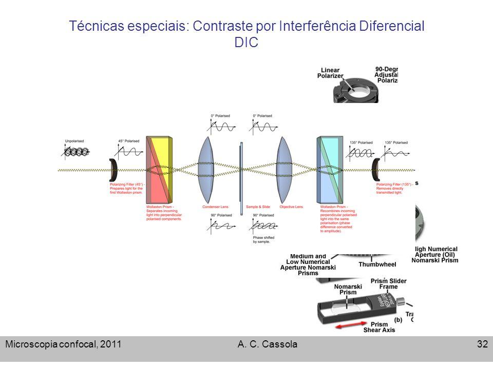 Microscopia confocal, 2011A. C. Cassola32 Técnicas especiais: Contraste por Interferência Diferencial DIC
