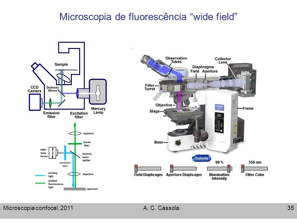 Microscopia confocal, 2011A. C. Cassola35 Microscopia de fluorescência wide field