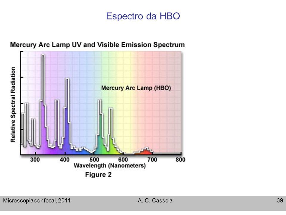 Microscopia confocal, 2011A. C. Cassola39 Espectro da HBO