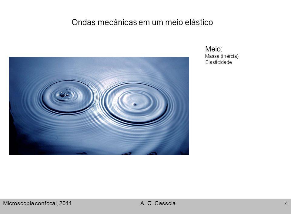 Ondas mecânicas em um meio elástico Microscopia confocal, 2011A. C. Cassola4 Meio: Massa (inércia) Elasticidade