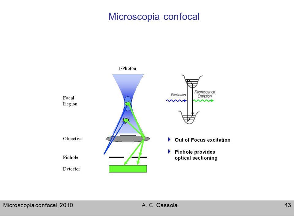 Microscopia confocal, 2010A. C. Cassola43 Microscopia confocal