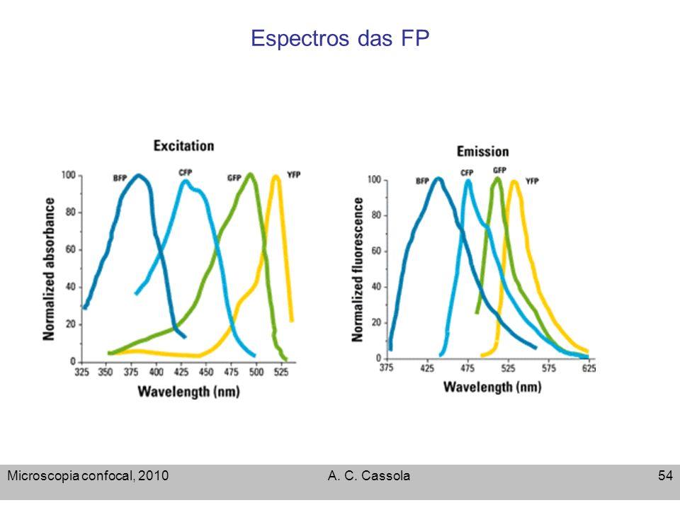 Microscopia confocal, 2010A. C. Cassola54 Espectros das FP