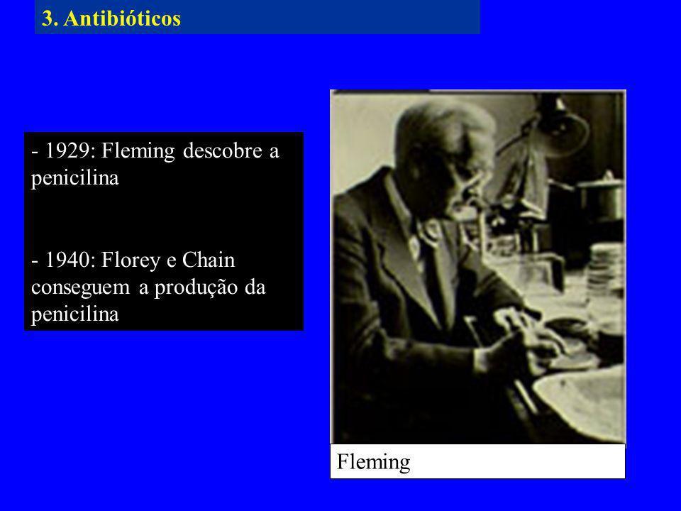 - 1929: Fleming descobre a penicilina - 1940: Florey e Chain conseguem a produção da penicilina Fleming