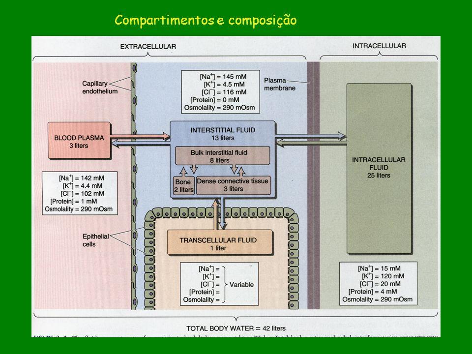 Figura – Boron Tabela – Boron Compartimentos e composição