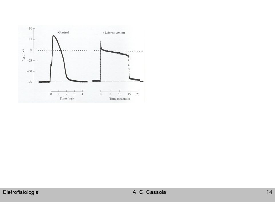 EletrofisiologiaA. C. Cassola14