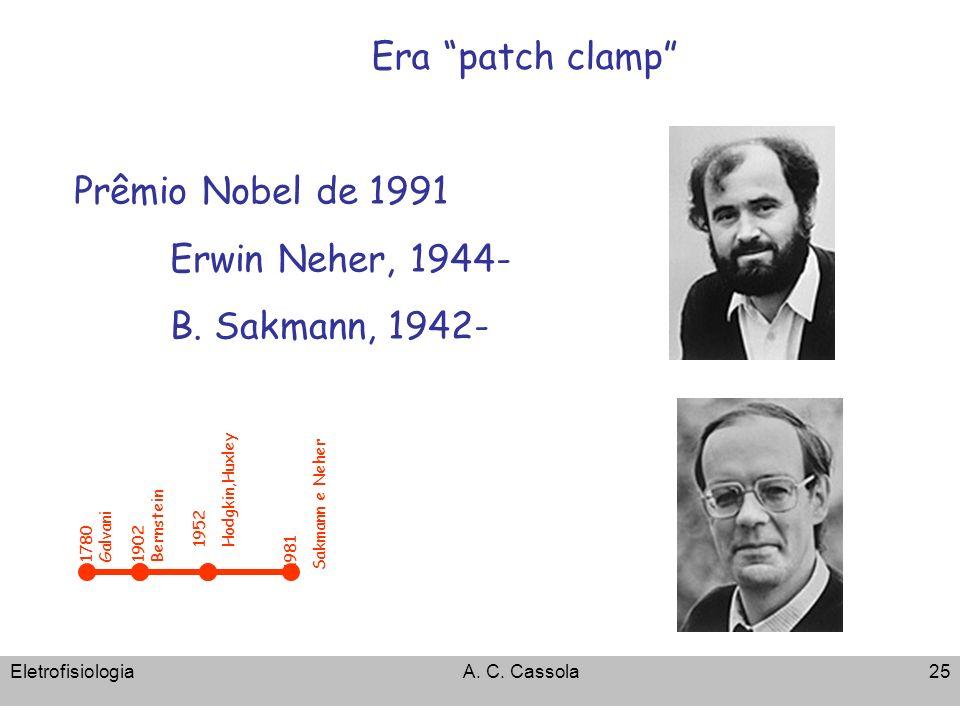 EletrofisiologiaA. C. Cassola25 Era patch clamp 1952 Hodgkin,Huxley 1902 Bernstein 1780 Galvani 1981 Sakmann e Neher Prêmio Nobel de 1991 Erwin Neher,