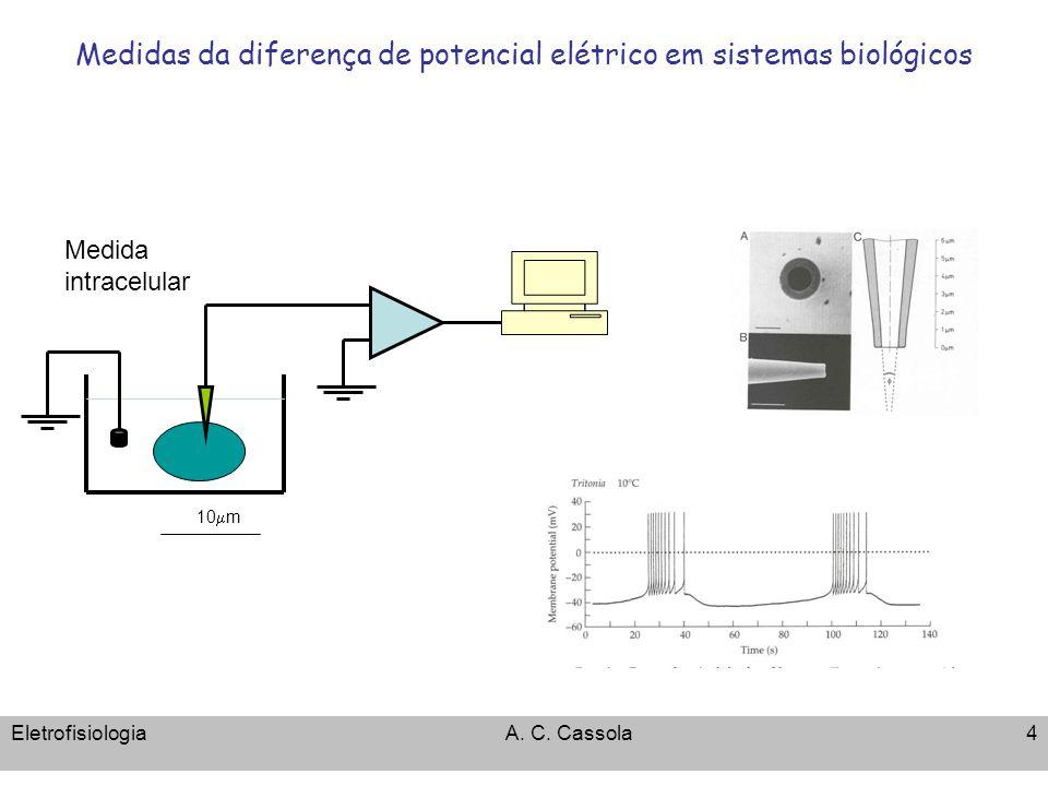 EletrofisiologiaA. C. Cassola4 Medidas da diferença de potencial elétrico em sistemas biológicos 10 m Medida intracelular