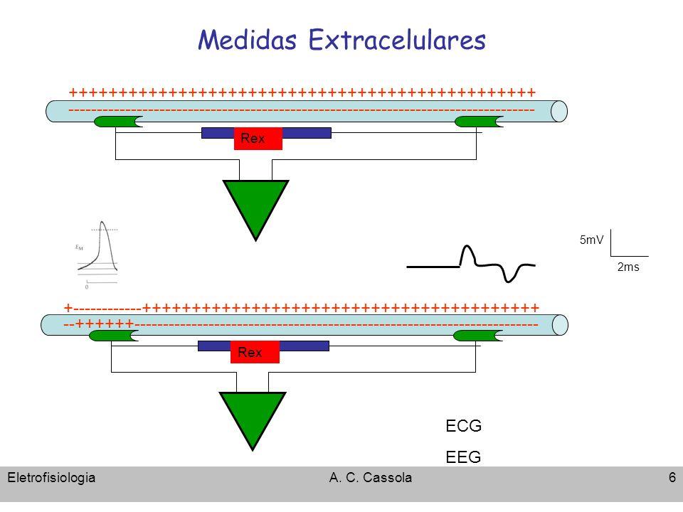 EletrofisiologiaA. C. Cassola6 Medidas Extracelulares +++++++++++++++++++++++++++++++++++++++++++++++ ------------------------------------------------