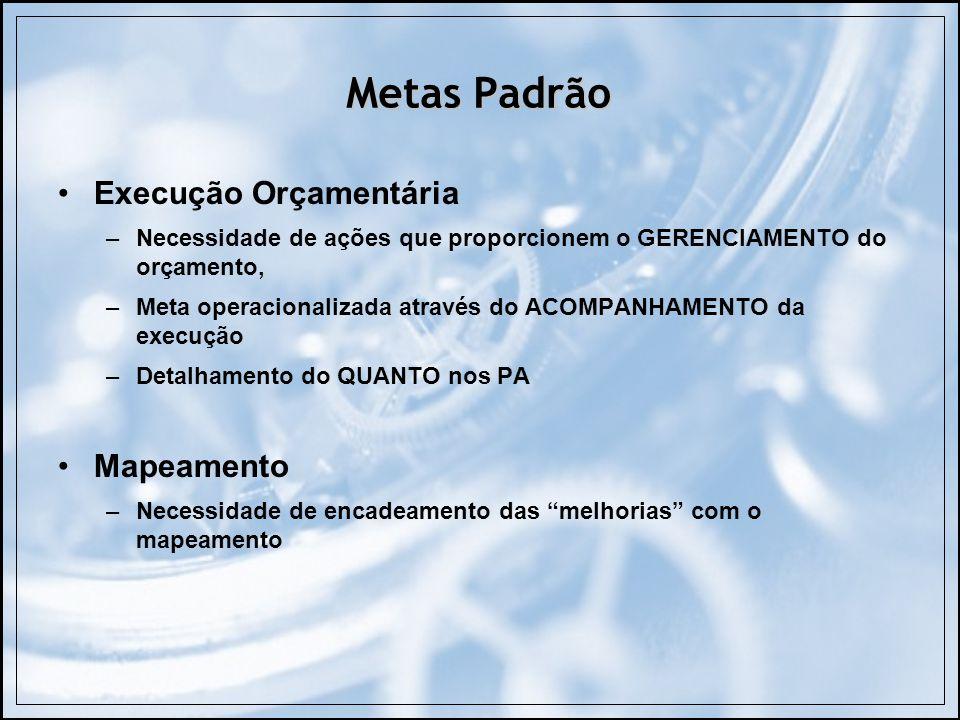 Metas Padrão Execução Orçamentária –Necessidade de ações que proporcionem o GERENCIAMENTO do orçamento, –Meta operacionalizada através do ACOMPANHAMEN