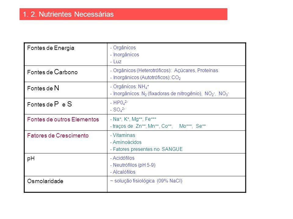 1. 2. Nutrientes Necessárias Fontes de Energia - Orgânicos - Inorgânicos - Luz Fontes de C arbono - Orgânicos (Heterotróficos): Açúcares, Proteínas -