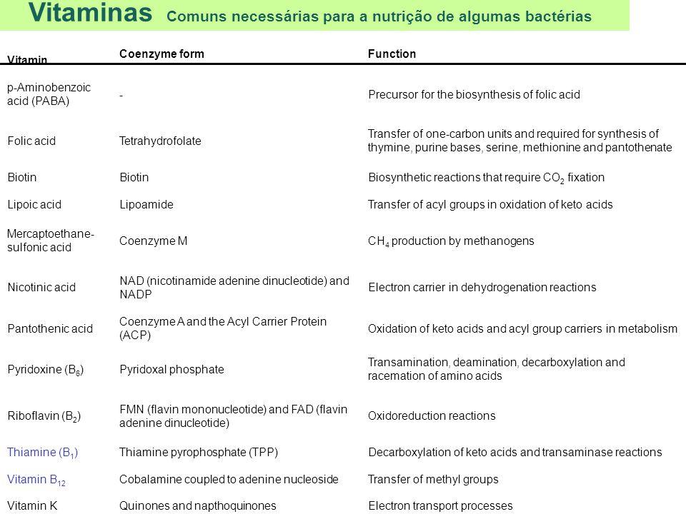 Vitaminas Comuns necessárias para a nutrição de algumas bactérias Vitamin Coenzyme formFunction p-Aminobenzoic acid (PABA) - Precursor for the biosynt