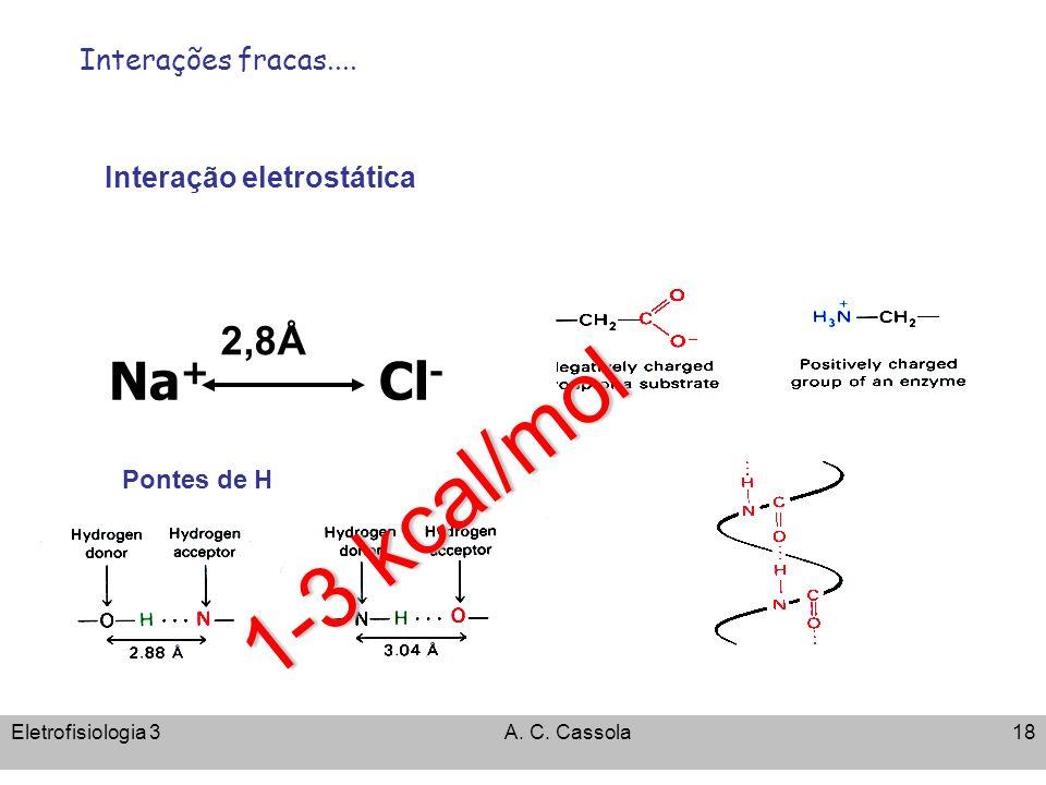 Eletrofisiologia 3A. C. Cassola18 Na + Cl - 2,8Å Interação eletrostática 1-3 kcal/mol Interações fracas.... Pontes de H