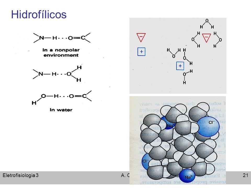 Eletrofisiologia 3A. C. Cassola21 Hidrofílicos