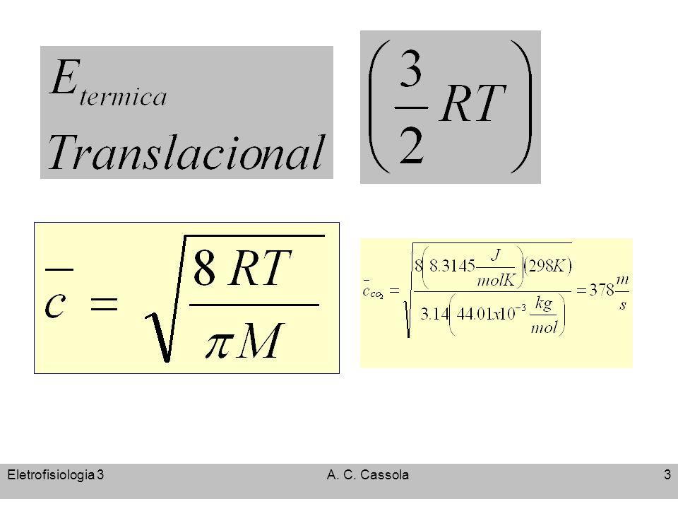 Eletrofisiologia 3A. C. Cassola3