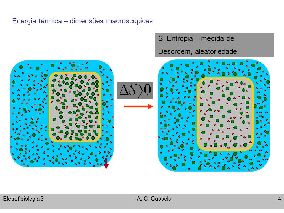 Eletrofisiologia 3A. C. Cassola4 q Energia térmica – dimensões macroscópicas S: Entropia – medida de Desordem, aleatoriedade