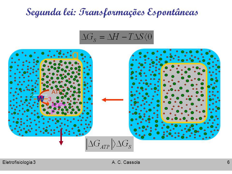 Eletrofisiologia 3A. C. Cassola6 Segunda lei: Transformações Espontâneas Energia Livre de Gibbs q 3 2 ADP+ P ATP w