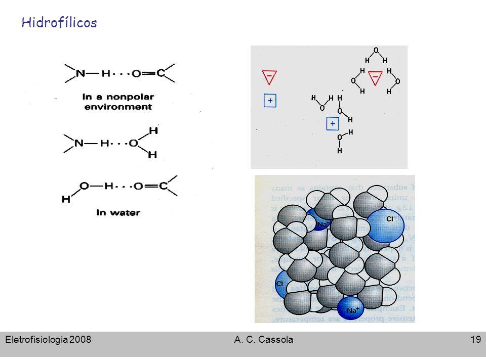 Eletrofisiologia 2008A. C. Cassola19 Hidrofílicos