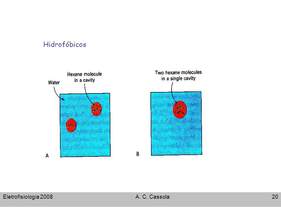 Eletrofisiologia 2008A. C. Cassola20 Hidrofóbicos