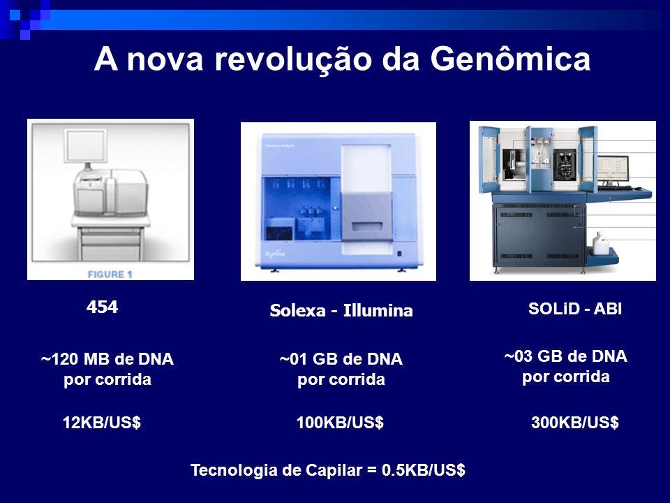 A nova revolução da Genômica 454 Solexa - Illumina SOLiD - ABI ~120 MB de DNA por corrida ~01 GB de DNA por corrida ~03 GB de DNA por corrida 12KB/US$