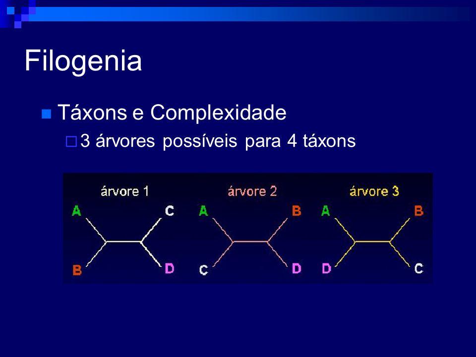 Filogenia Táxons e Complexidade 3 árvores possíveis para 4 táxons Para 5 táxons?