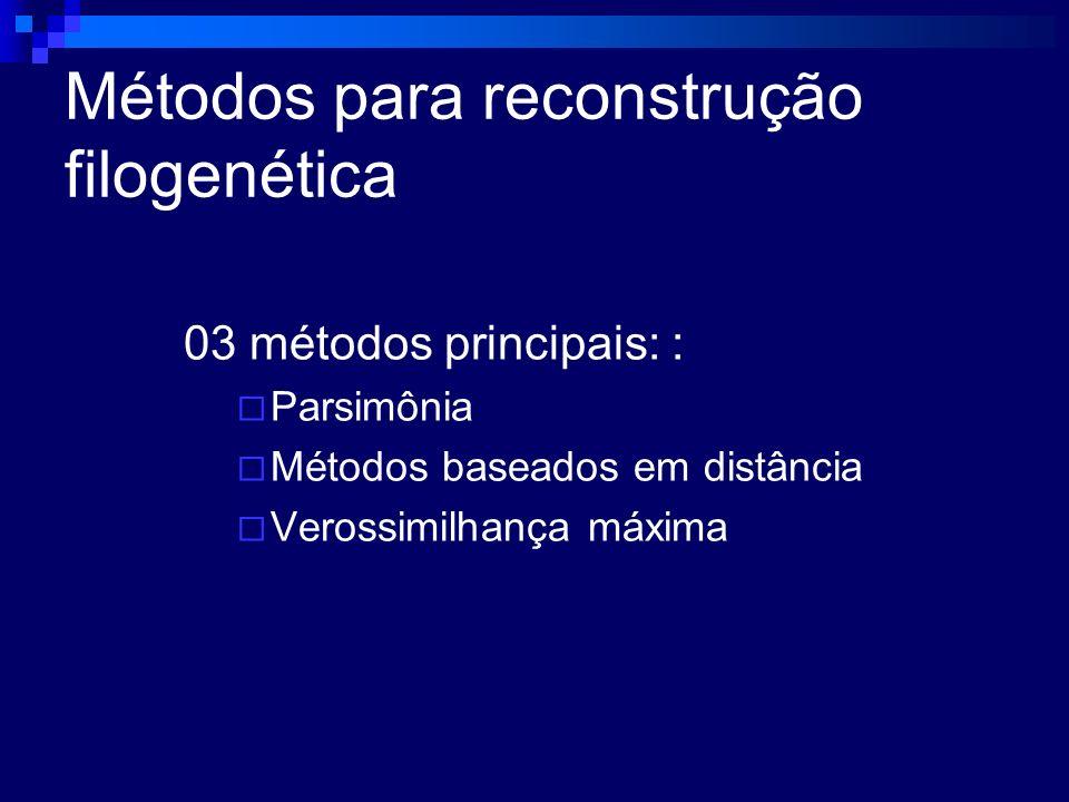 Métodos para reconstrução filogenética 03 métodos principais: : Parsimônia Métodos baseados em distância Verossimilhança máxima