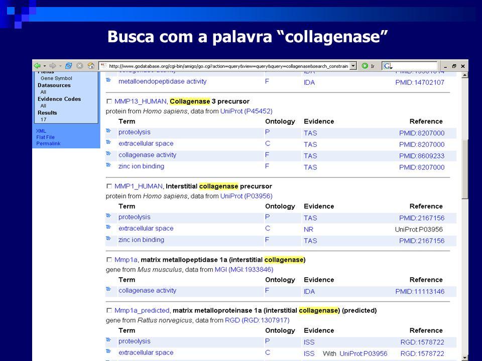 Busca com a palavra collagenase