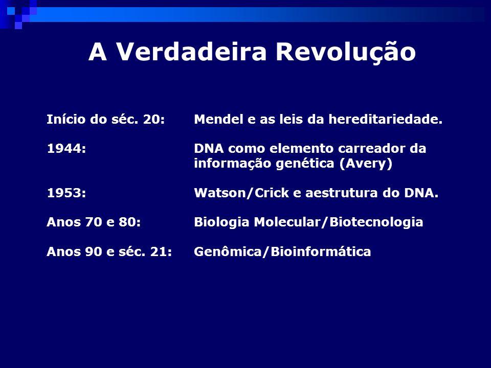 A Verdadeira Revolução Início do séc. 20:Mendel e as leis da hereditariedade. 1944: DNA como elemento carreador da informação genética (Avery) 1953: W