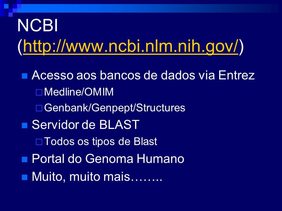 NCBI (http://www.ncbi.nlm.nih.gov/)http://www.ncbi.nlm.nih.gov/ Acesso aos bancos de dados via Entrez Medline/OMIM Genbank/Genpept/Structures Servidor