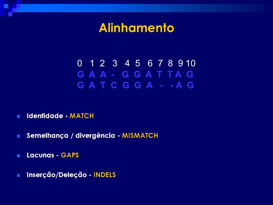 Alinhamento Identidade - MATCH Semelhança / divergência - MISMATCH Lacunas - GAPS Inserção/Deleção - INDELS 0 1 2 3 4 5 6 7 8 9 10 G A A - G G A T T A