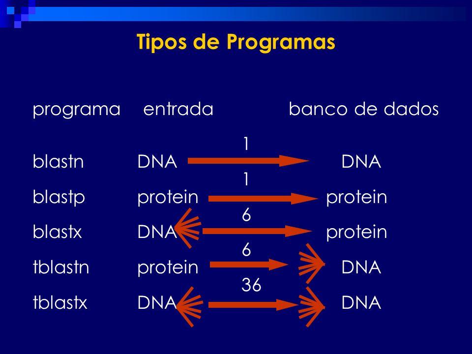 programa entrada banco de dados 1 blastn DNA DNA 1 blastp protein protein 6 blastx DNA protein 6 tblastn protein DNA 36 tblastx DNA DNA Tipos de Progr