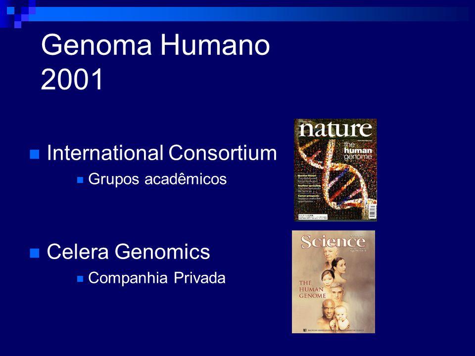 Genoma Humano 2001 International Consortium Grupos acadêmicos Celera Genomics Companhia Privada