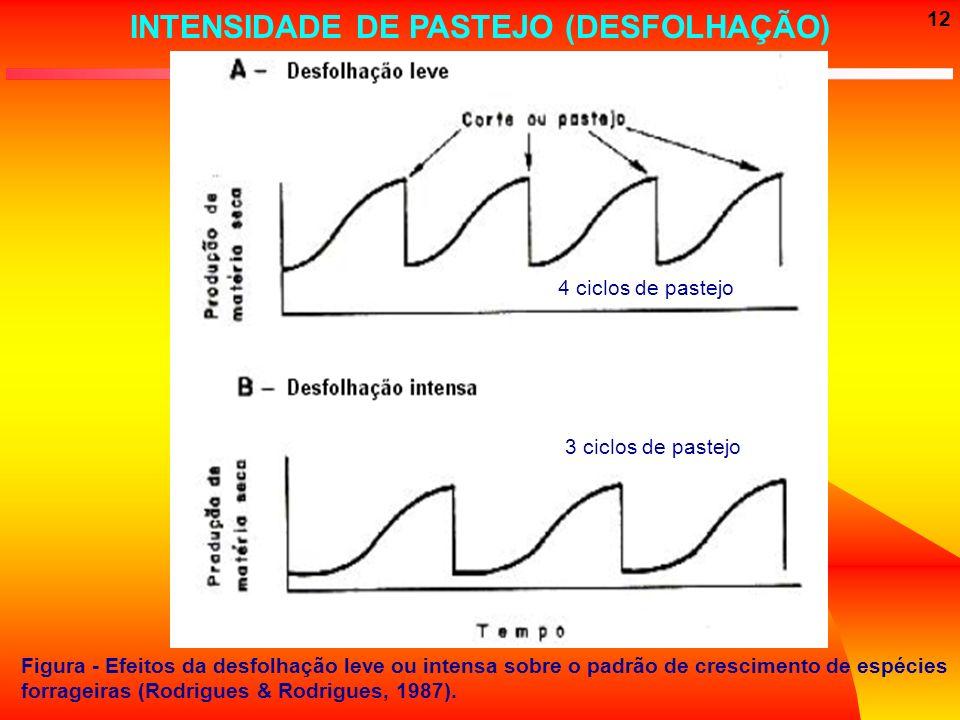 12 Figura - Efeitos da desfolhação leve ou intensa sobre o padrão de crescimento de espécies forrageiras (Rodrigues & Rodrigues, 1987). 4 ciclos de pa