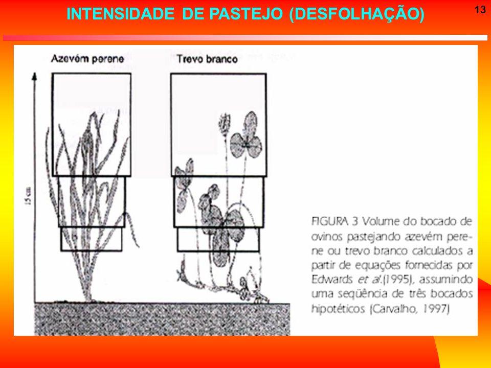 13 INTENSIDADE DE PASTEJO (DESFOLHAÇÃO)
