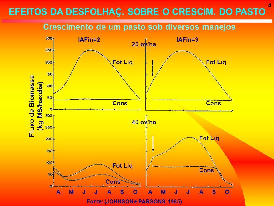 4 Crescimento de um pasto sob diversos manejos Fluxo de Biomassa (kg MS/ha dia) AMJJASOAMJJASO Fot Líq Cons IAFin=3IAFin=2 20 ov/ha 40 ov/ha Fot Líq C