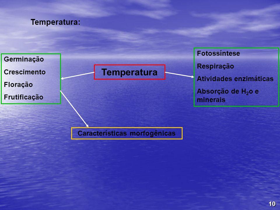 10 Temperatura: Germinação Crescimento Floração Frutificação Fotossíntese Respiração Atividades enzimáticas Absorção de H 2 o e minerais Temperatura C