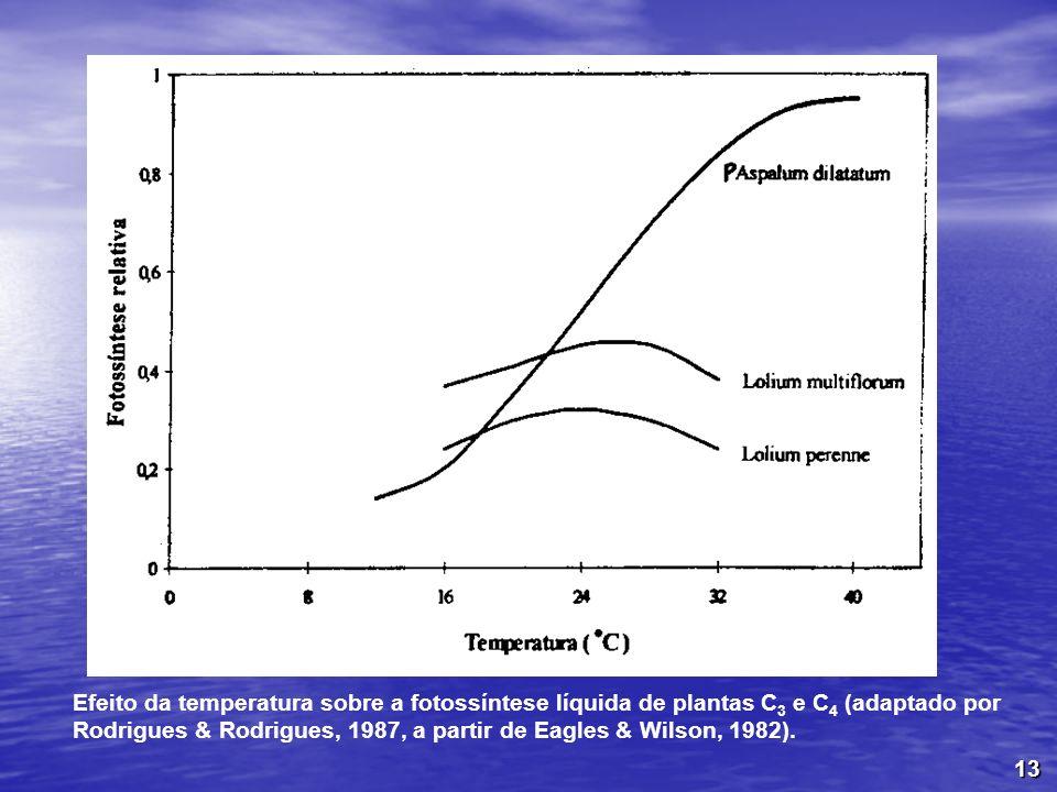 13 Efeito da temperatura sobre a fotossíntese líquida de plantas C 3 e C 4 (adaptado por Rodrigues & Rodrigues, 1987, a partir de Eagles & Wilson, 198