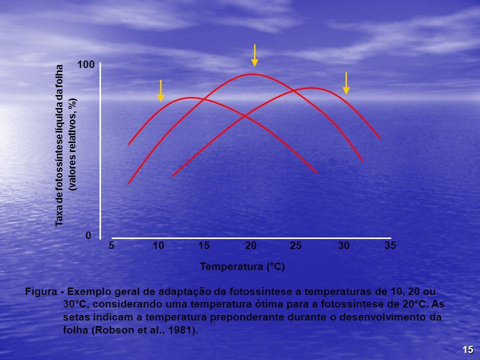 15 Figura - Exemplo geral de adaptação da fotossíntese a temperaturas de 10, 20 ou 30°C, considerando uma temperatura ótima para a fotossíntese de 20°