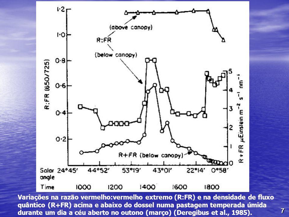 7 Variações na razão vermelho:vermelho extremo (R:FR) e na densidade de fluxo quântico (R+FR) acima e abaixo do dossel numa pastagem temperada úmida d