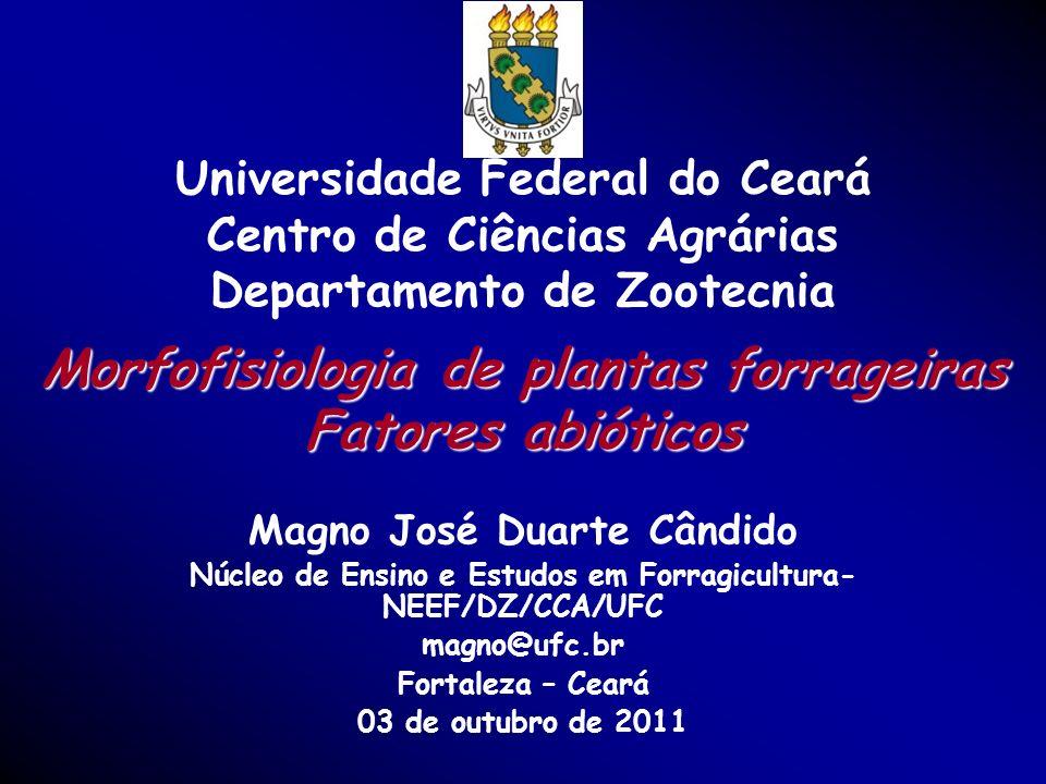 1 Morfofisiologia de plantas forrageiras Fatores abióticos Magno José Duarte Cândido Núcleo de Ensino e Estudos em Forragicultura- NEEF/DZ/CCA/UFC mag