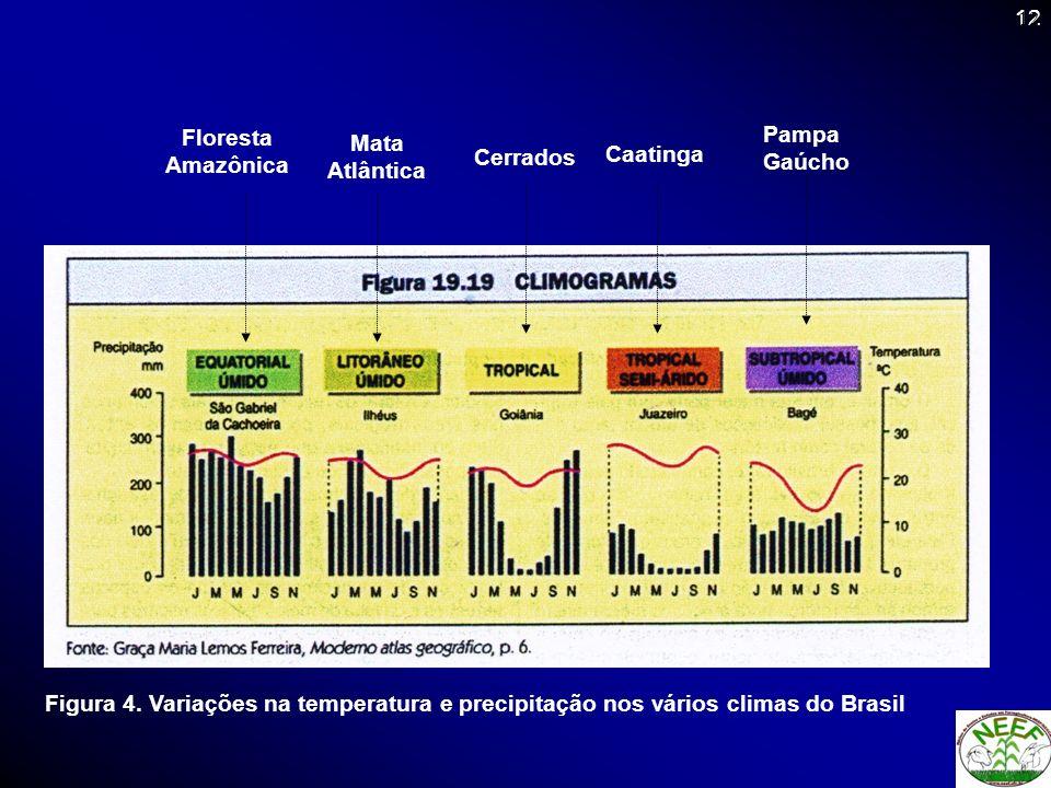 12 Figura 4. Variações na temperatura e precipitação nos vários climas do Brasil Cerrados Caatinga Pampa Gaúcho Mata Atlântica Floresta Amazônica