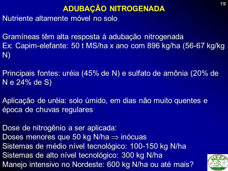 19 ADUBAÇÃO NITROGENADA Nutriente altamente móvel no solo Gramíneas têm alta resposta à adubação nitrogenada Ex: Capim-elefante: 50 t MS/ha x ano com