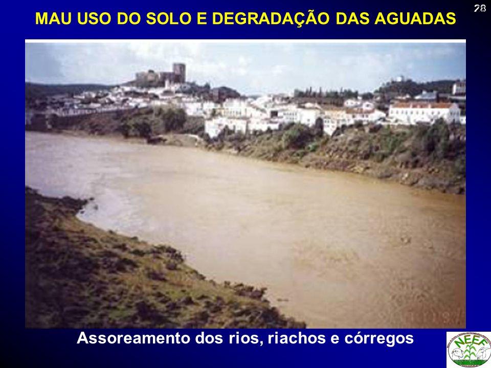 28 Assoreamento dos rios, riachos e córregos MAU USO DO SOLO E DEGRADAÇÃO DAS AGUADAS