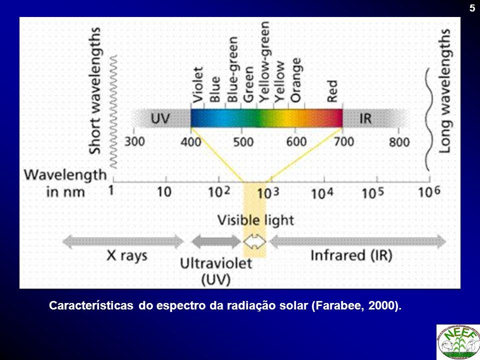 6 Redução na quantidade de radiação fotossinteticamente ativa e na sua qualidade com o desenvolvimento do dossel Relação Vermelho/Vermelho extremo (V/Ve) No topoaltaaltaalta Abaixo das camadas de folhas (na região do meristema apical da planta médiabaixa Muito baixa