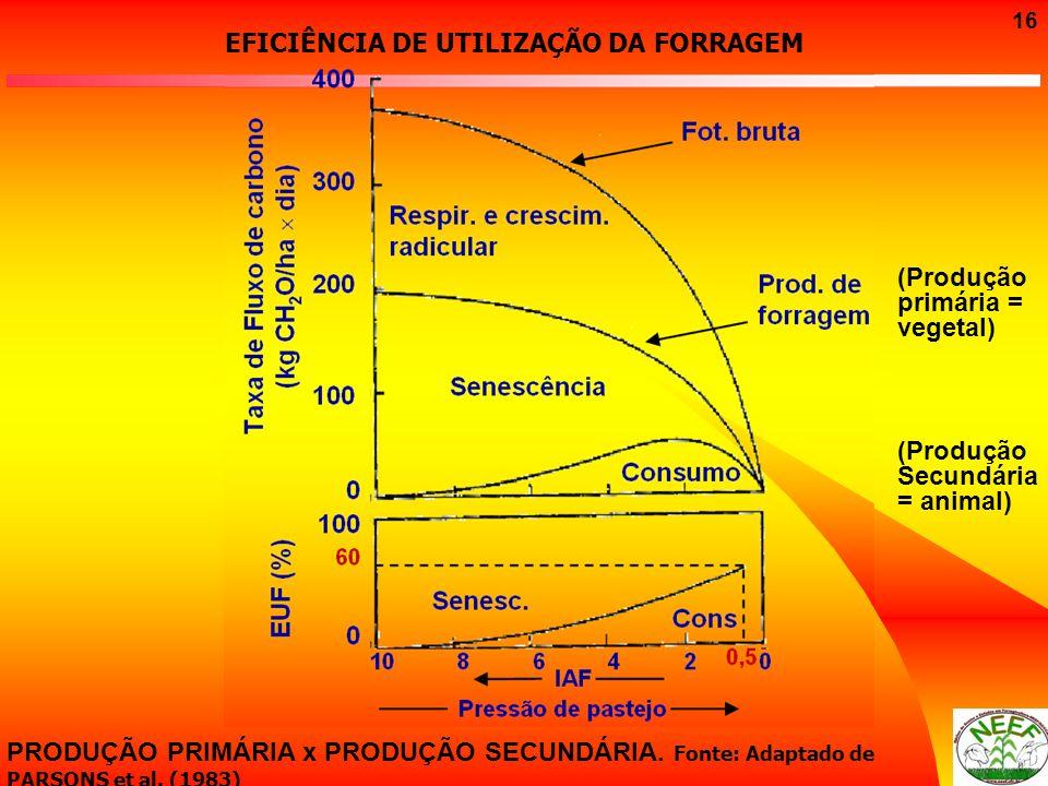 16 PRODUÇÃO PRIMÁRIA x PRODUÇÃO SECUNDÁRIA. Fonte: Adaptado de PARSONS et al. (1983) EFICIÊNCIA DE UTILIZAÇÃO DA FORRAGEM (Produção primária = vegetal