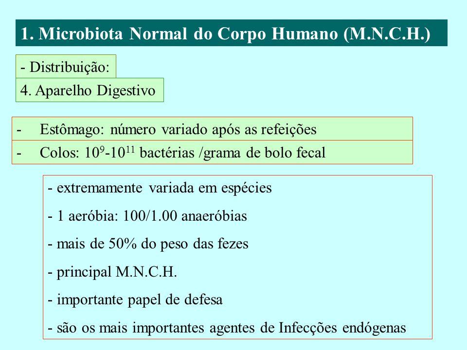 1. Microbiota Normal do Corpo Humano (M.N.C.H.) - Distribuição: 4. Aparelho Digestivo -Estômago: número variado após as refeições -Colos: 10 9 -10 11