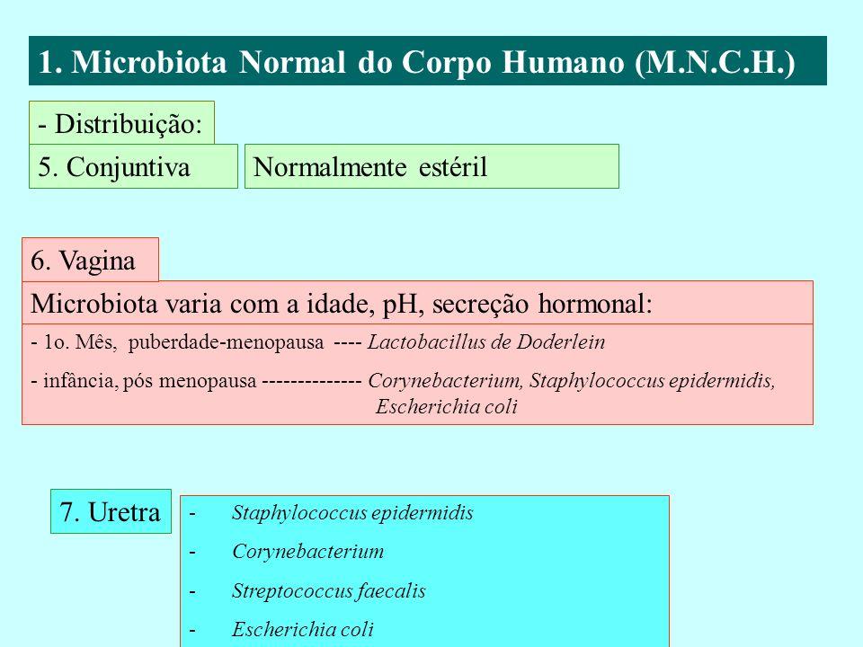 1. Microbiota Normal do Corpo Humano (M.N.C.H.) - Distribuição: 5. Conjuntiva Microbiota varia com a idade, pH, secreção hormonal: 6. Vagina 7. Uretra