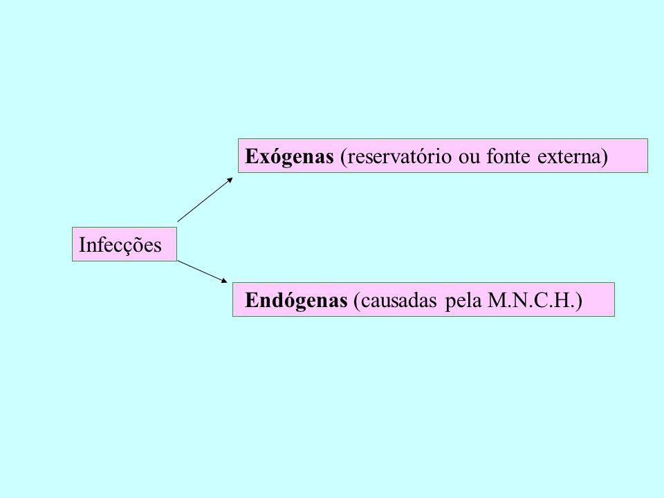 Infecções Exógenas (reservatório ou fonte externa) Endógenas (causadas pela M.N.C.H.)