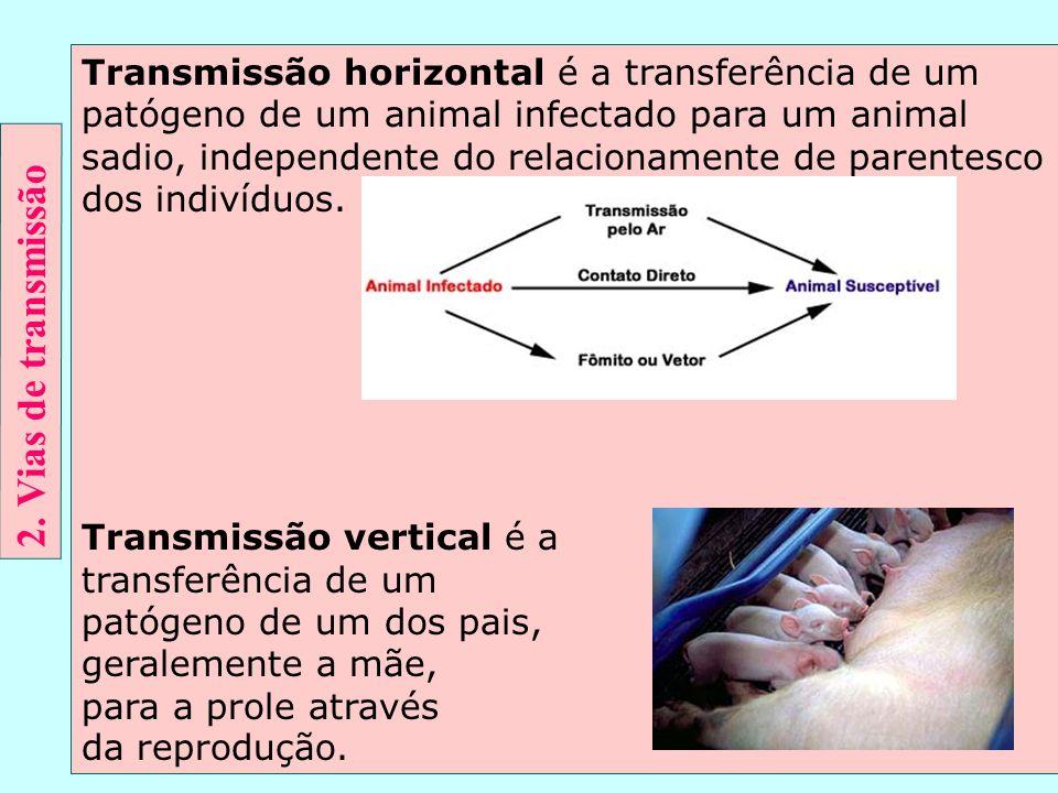 Transmissão horizontal é a transferência de um patógeno de um animal infectado para um animal sadio, independente do relacionamente de parentesco dos