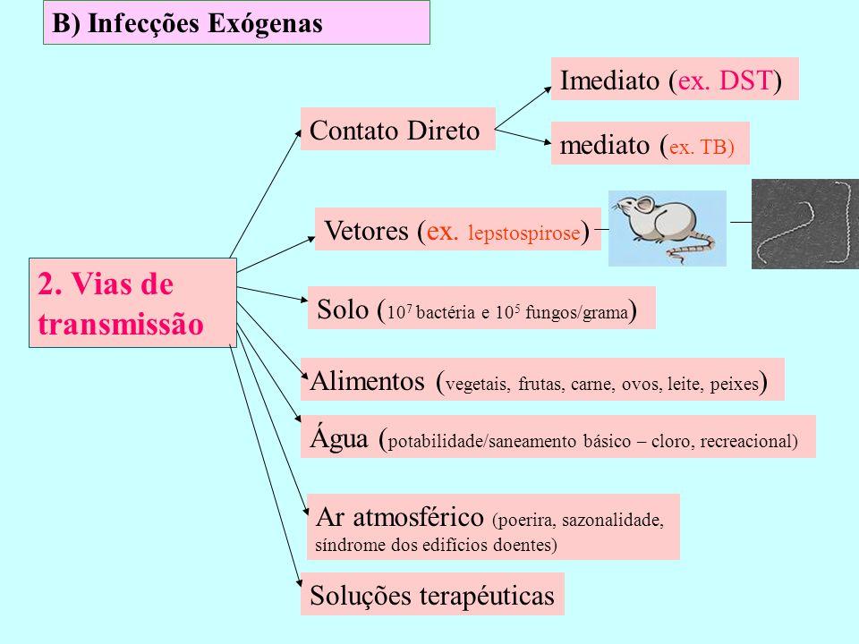 B) Infecções Exógenas 2. Vias de transmissão Vetores (ex. lepstospirose ) Contato Direto Solo ( 10 7 bactéria e 10 5 fungos/grama ) Alimentos ( vegeta